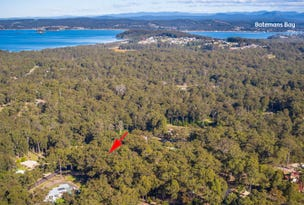 Lot 195 Tree Fern Place, Long Beach, NSW 2536