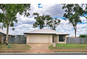 363 Farm Street, Norman Gardens, Qld 4701