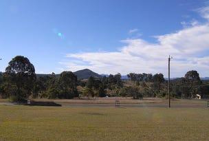 Mountview Avenue, Wingham, NSW 2429