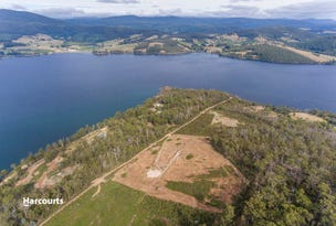 Lot 2 Cygnet Coast Road, Petcheys Bay, Tas 7109