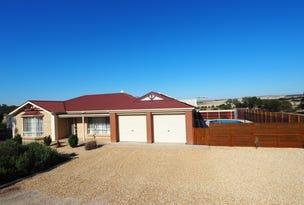 29 Park Way, Murray Bridge South, SA 5253