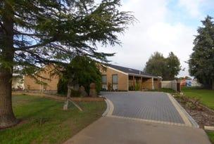 12 Elinda Court, Red Cliffs, Vic 3496
