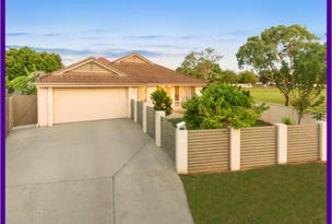 20 Carl Place, Kuraby, Qld 4112