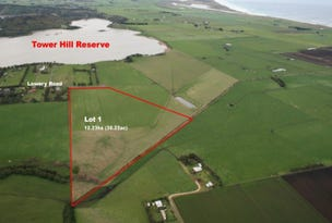 Lot 1 Lowery Road, Tower Hill, Vic 3283