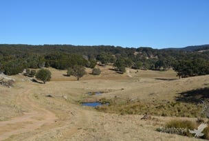 2875 Mount Lindesay Road, Boonoo Boonoo, NSW 2372