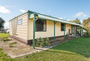 1028 Murchison Highway, Elliott, Tas 7325