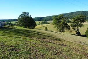 Lot 1, Old Brierfield Road, Bellingen, NSW 2454