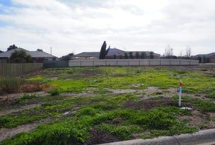1 Hindmarsh Court, Nhill, Vic 3418