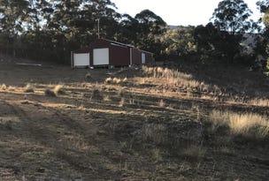 Lot 101 Pembroke Road, Cassilis, NSW 2329