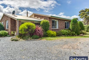 10 Junction Road, Mole Creek, Tas 7304