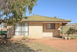 166 Darling Street, Wentworth, NSW 2648
