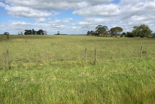 LOT 45 SAVAGES ROAD, Cobden, Vic 3266