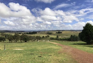 7651 Thunderbolts Way, Nowendoc, NSW 2354