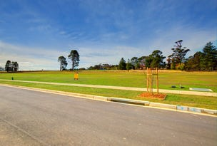 Lot 6 Challoner Rise, Renwick, NSW 2575