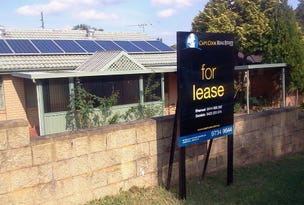 91 Congressional Drive, Liverpool, NSW 2170
