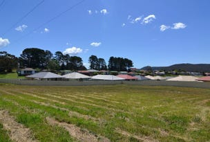 Lot 110 Sidey Place, Wallerawang, NSW 2845