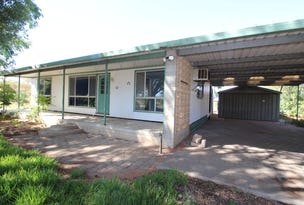 9 Foster Road, Waikerie, SA 5330