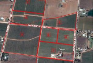 Lot 97 Ettiwanda, Renmark, SA 5341