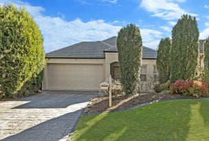 10 Tree Martin Court, Tea Tree Gully, SA 5091