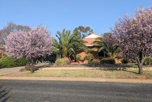 21 Golden Bar Drive, Parkes, NSW 2870