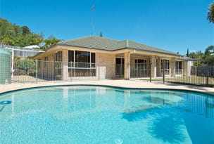 8 Osmond Court, Pacific Pines, Qld 4211