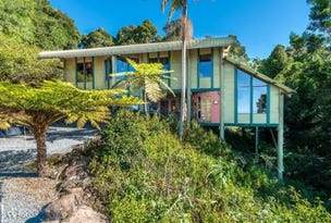 162 Repeater Station Road, Springbrook, Qld 4213