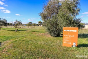 Lot 101, Lot 101 Burts Road, Dutton, SA 5356