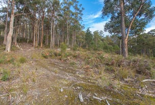 Lot 0785 Wallis Road, Judbury, Tas 7109