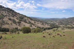 """. """"East Towarri"""", Kars Springs Rd, Scone, NSW 2337"""
