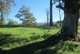 Lot 119 Lyrebird Place, Bodalla, NSW 2545