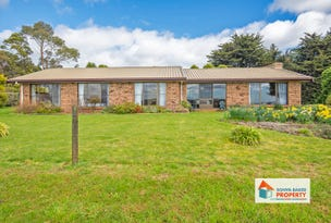 306 Village Lane, Somerset, Tas 7322