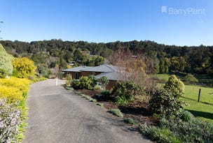 36 Meadowview Lane, Emerald, Vic 3782