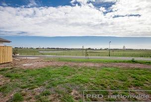 43 Barr Prominade, Thornton, NSW 2322