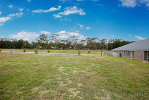 Lot 350 Watervale Circuit, Chisholm, NSW 2322