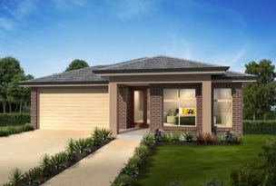 Lot 234 Vine Street, Chisholm, NSW 2322