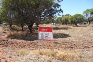 Lot 122 Scott Street, Mount Hardey, WA 6302