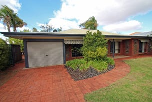 4 Cocos Place, Renmark, SA 5341