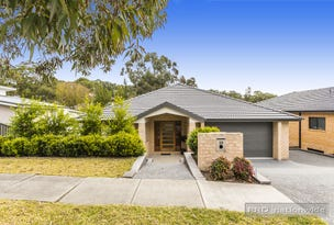 19 Paddock Close, Elermore Vale, NSW 2287