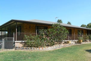 408 Sandy Creek Road, Muswellbrook, NSW 2333