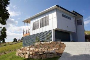 9 Echidna Street, Pottsville, NSW 2489