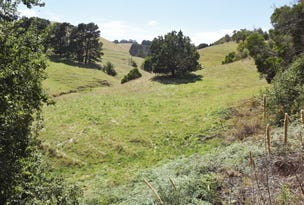 520A Berrys Creek Road, Mirboo North, Vic 3871