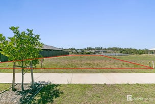 Lot 16, 110 Grand Parade, Rutherford, NSW 2320