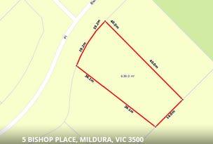 5 Bishop Place, Mildura, Vic 3500