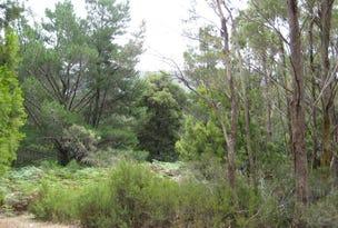Gordon River Road, National Park, Tas 7140