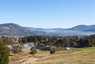 99 Snowy View Heights, Huonville, Tas 7109