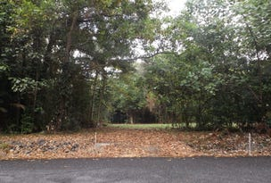 Lot 74 Forest Creek Road, Daintree, Qld 4873