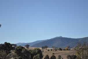 Lot 2, Buller Road, Merrijig, Vic 3723