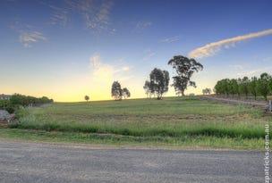 30 Kunzea Place, Springvale, NSW 2650