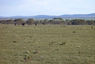 Section 30 Hundred of Minbrie, Cowell, SA 5602
