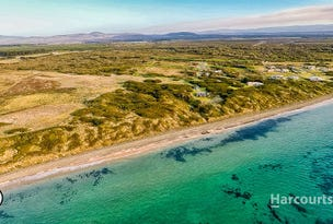 86 Bell Buoy Beach Road, Low Head, Tas 7253